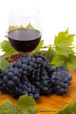 Glasses of wine and grapes on white. Background Stock Image