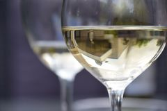Glasses of wine stock photos
