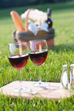Glasses of wine and picnic on the grass. Picnic on the grass with red wine Royalty Free Stock Photo