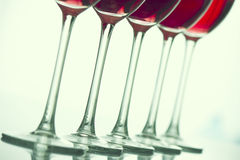 Glasses of wine Royalty Free Stock Photography