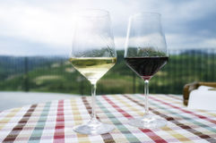 Glasses for wine tasting. Color image Stock Photos