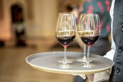 Glasses with wine on a tray. Meeting with guests. The waiter carries a tray with wine royalty free stock photos