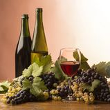 Gasses of wine Stock Image