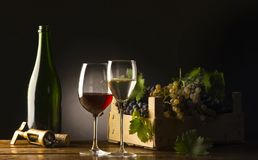 Gasses of wine Stock Photography