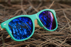 Glasses in the woods. Wooden glesses beautiful and fashion, natural trend royalty free stock photos