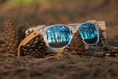 Glasses in the woods. Wooden glesses beautiful and fashion, natural trend royalty free stock images
