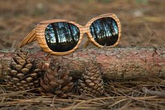 Glasses in the woods Stock Photos