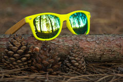 Glasses in the woods. Wooden glesses beautiful and fashion, natural trend royalty free stock image