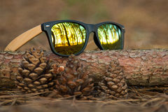 Glasses in the woods. Wooden glesses beautiful and fashion, natural trend stock photos