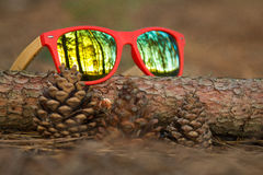 Glasses in the woods. Wooden glesses beautiful and fashion, natural trend stock image