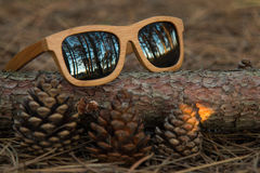 Glasses in the woods. Wooden glesses beautiful and fashion, natural trend royalty free stock photography