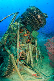 Glassfish swarm around underwater wreckage on a tropical reef. Tropical fish swarm around random manmade wreckage on the seabed stock images