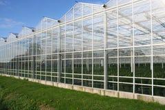 Glasshouse Stock Images