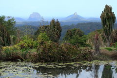 Glasshouse Mountains Stock Images