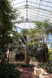Glasshouse view Royalty Free Stock Images