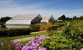 The grand glasshouse at Wisley. Stock Photos