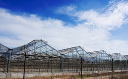 Glasshouses Royalty Free Stock Images