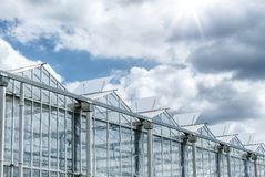 Greenhouse with blue sky on a summer day. Royalty Free Stock Images
