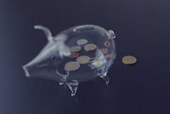 Glassparschwein 2 Stockbild