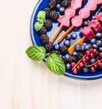 Glasssorbetpop med den olika sommarbär och mintkaramellen i blåttplatta på vit träbakgrund Fotografering för Bildbyråer
