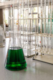 Glassware with chemical liquid in laboratory Royalty Free Stock Photos