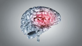 Glassy brain stock video