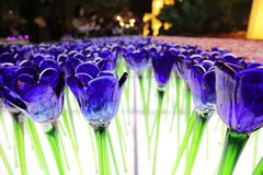 Glassy flower at xmas lighting. The Glassy flower at xmas lighting hk royalty free stock photography