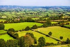 Glastonbury fält Royaltyfria Foton