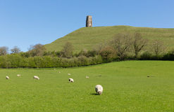 Glastonbury Tor Somerset Stock Images