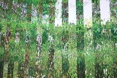 Glasvägg med abstrakt begrepp Royaltyfria Bilder