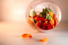 Glasvaas met rode roze bloemblaadjes wordt gevuld dat Het concept van Aromatherapy royalty-vrije stock foto's