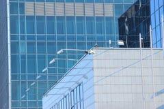 Glaswolkenkratzer auf blauem Himmel des Hintergrundes Stockfotografie