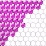 Glaszellpurpurrotes Weiß Stockbilder