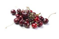glatt Cherry Royaltyfri Fotografi