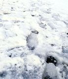 Glatte Eispflasterung der Bushaltestelle lizenzfreie stockfotografie