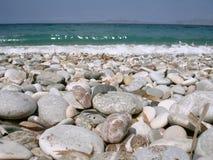 Glatte Steine und das Meer stockbilder