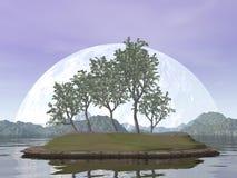 Glatter leaved Ulmenbonsaibaum - 3D übertragen stock abbildung