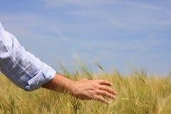 Glauben der Natur Lizenzfreie Stockbilder