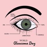 Glaucoma Day Royalty Free Stock Photos