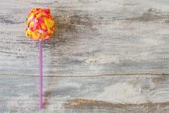Glazed candy on a stick. Royalty Free Stock Photography