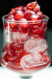 Glazed cherries with white back ground. Glazed cherries in a glass with some ice royalty free stock photos