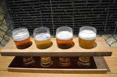 Glazen bier in een houten tribune Stock Afbeelding