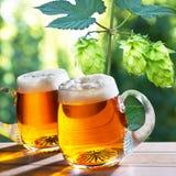 Glazen bier met hop Royalty-vrije Stock Fotografie