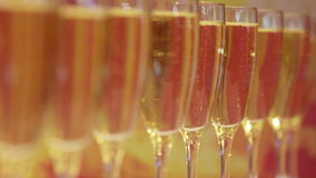 Glazen champagne stock video