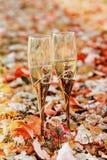 glazen champagnechampagne, glazen, alcohol, verjaardag, achtergrond, Royalty-vrije Stock Foto's