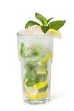 Glazen fruitdranken met ijsblokjes Stock Fotografie