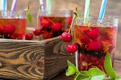Glazen van het verfrissen van drank met vers fruit en decorum op smaak dat worden gebracht dat royalty-vrije stock afbeelding