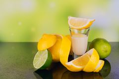 Glazen van roomlikeur met kalk en citroen op groene achtergrond stock fotografie