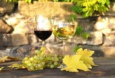 Glazen wijn Stock Foto's