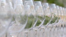 Glazen Wijn met Munt stock video